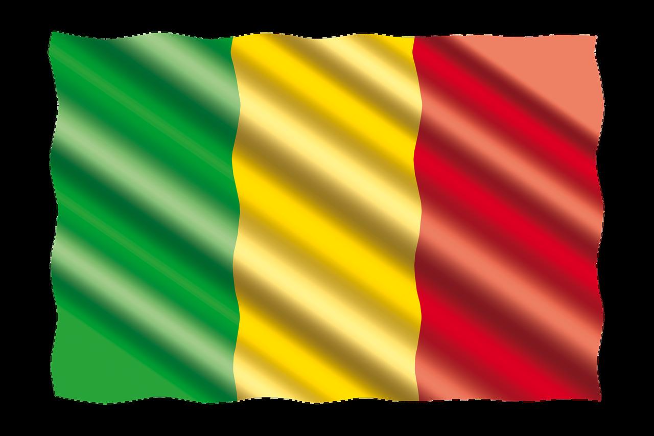 Association des Stagiaires et Etudiants Maliens des Bouches-du-Rhône – ASEM